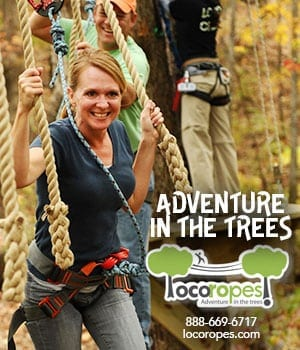 Loco Ropes at Ozark Folk Center State Park is an Exhilarating Adventurous Experience for a Great Fun Challenge!
