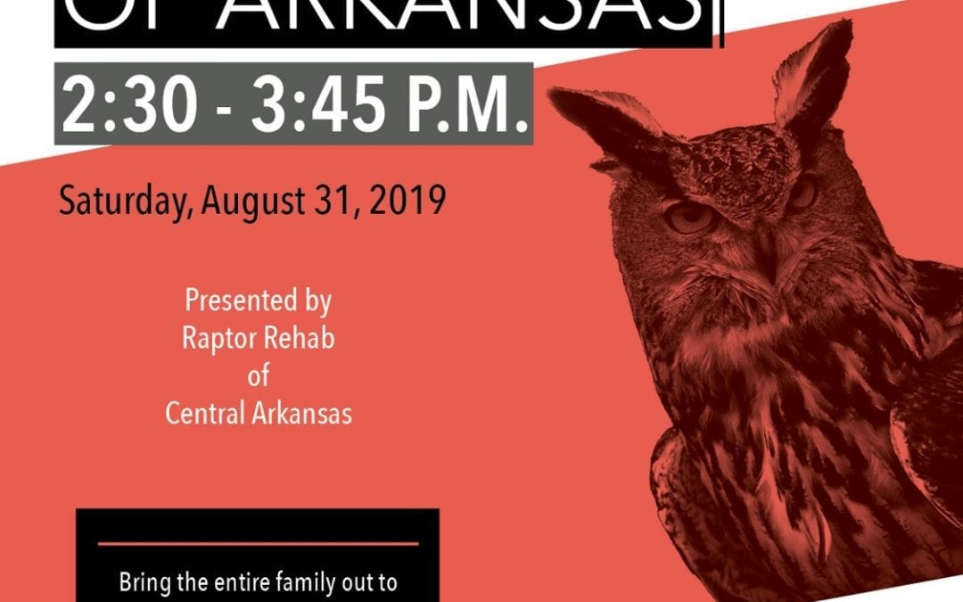 """Live Raptors of Arkansas""""  Coming to Jacksonport State Park on Labor Day Weekend!"""