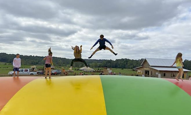 Jackson Farms is the destination for you to fall in love, pumpkins, sunflowers, jumping fun, corn maze and much more to enjoy at this family fun spot at Black Rock Arkansas